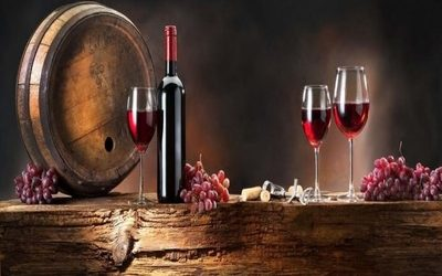 Introduction to the World of Wine